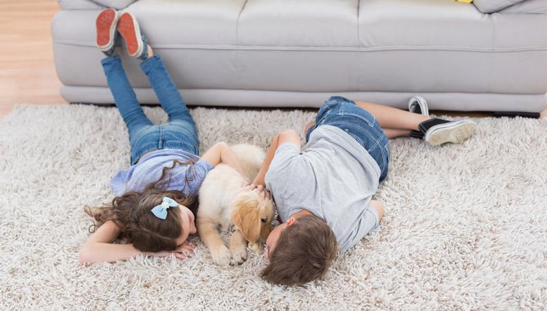 factores a tener en cuenta para calentar la casa sin gastar dinero